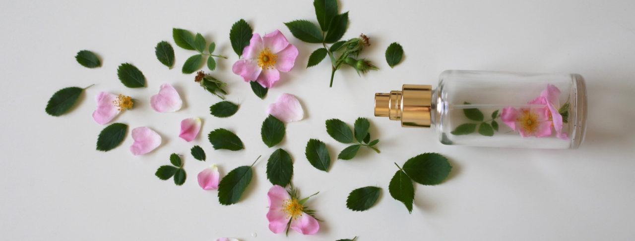 traduzioni per il settore cosmetico - opitrad