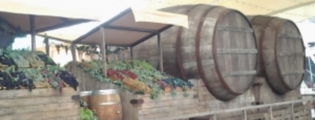 Traduzioni per l'export nel settore dei vini - opitrad