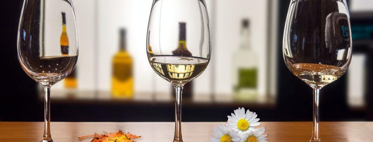 glossario sul vino - opitrad